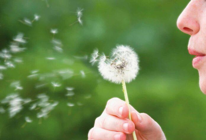 Descoperă cele mai interesante lucruri despre alergii și reacțiile acestora
